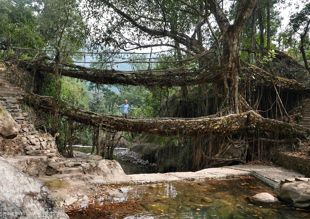Root Bridges - Nongriat - Double Decker