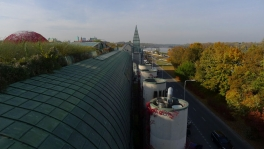 University Library Roof