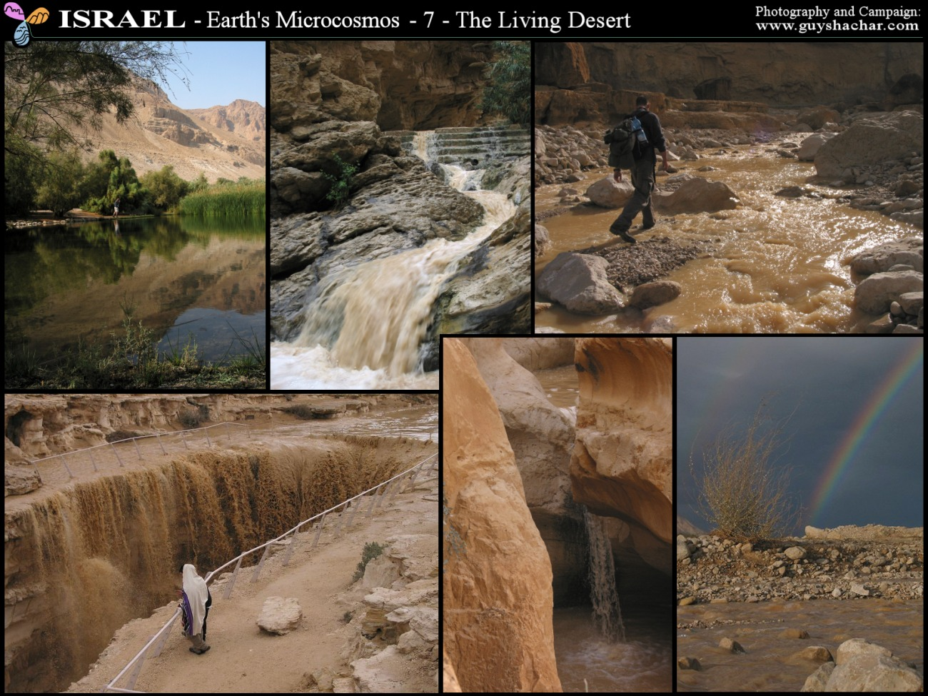 Photo Collages: Israel – Earth's Microcosm  Guy Shachar