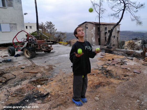 Post Carmel Forest Fire – The Line Between Black and Green