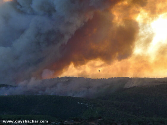 The mighty Carmel forest fire – photos